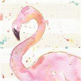 Flamingo Fever III no Words