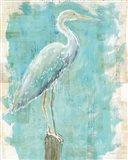 Coastal Egret I