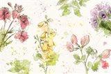 Floral Splash I