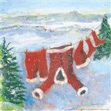 Santa Suit on Clothesline