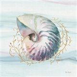 Ocean Dream V