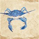 Blue Crab VI Neutral