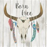 Bohemian Rising I no Border Born Free