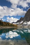 Floe Lake Reflection I