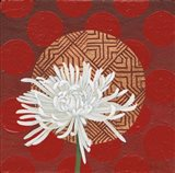 Morning Chrysanthemum IV