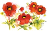 Flores Rojas VI