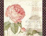 La Vie En Rose I with Border