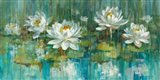 Water Lily Pond Crop