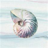 Ocean Dream V no Filigree