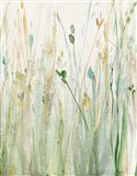 Spring Grasses II Crop