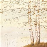 Golden Birch II Off White