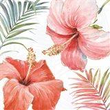 Tropical Blush III