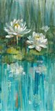 Water Lily Pond III