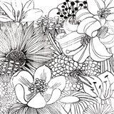 Contemporary Garden II Black and White