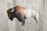 Colorful Bison Dark Brown on Wood