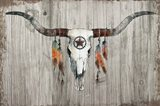 Longhorn on Dark Gray Wood