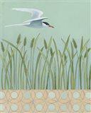 Free as a Bird I Border