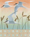 Free as a Bird II v2 Border