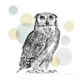 Sketchbook Lodge Owl Neutral