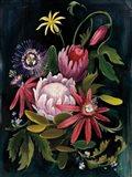 Flower Show II