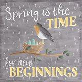 Smitten With Spring V