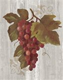 Autumn Grapes III on Wood