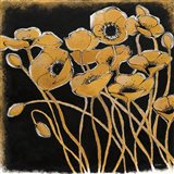 Gold Black Line Poppies I