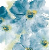 Seashell Cosmos I Blue and Yellow