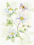 Floral Delight V Butterflies