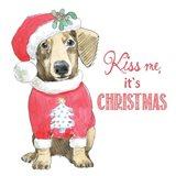 Glamour Pups Christmas III Kiss Me