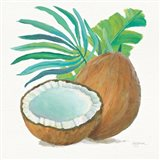 Coconut Palm III
