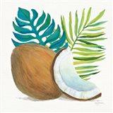Coconut Palm IV