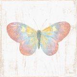 White Barn Butterflies I