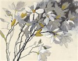 Magnolias Yellow Gray