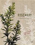 Organic Rosemary No Butterfly