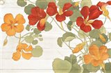 Summer Nasturtiums Cottage