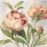 Scented Cottage Florals I Crop
