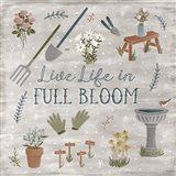 Blooming Garden I