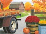 Autumn Affinity I