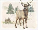Wilderness Collection Elk