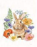 Sunny Bunny II FB