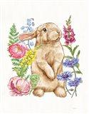Sunny Bunny III FB