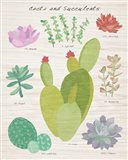 Succulent and Cacti Chart III on Wood