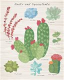 Succulent and Cacti Chart IV on Wood
