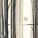 Through the Trees IV