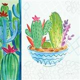 Cacti Garden II no Birds and Butterflies