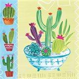 Cacti Garden III no Birds and Butterflies
