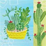 Cacti Garden IV no Birds and Butterflies