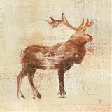 Elk Study v2