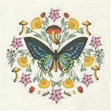Butterfly Mandala IV